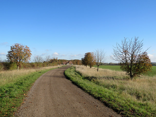 Hinxworth: bridle way to Green Lane