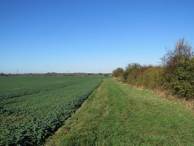 Towards Hinxworth Place