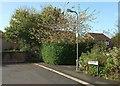 ST5776 : Path at Remenham Park by Derek Harper