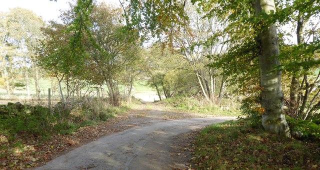 Road junction between Skerryalva and Corquhittachie