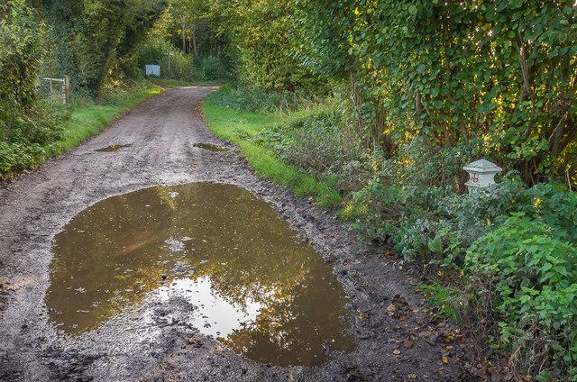 Track to Nohome Farm