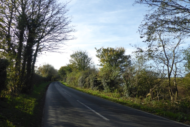 Road beside the river