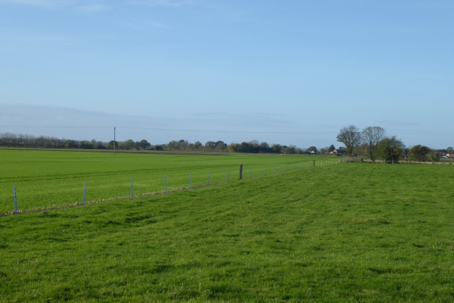 Field boundary between Cawood and Wistow