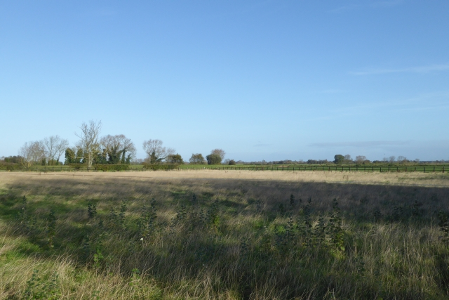 Field north of Wistow