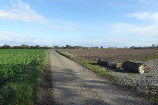 Ings Lane near Marsh Lane