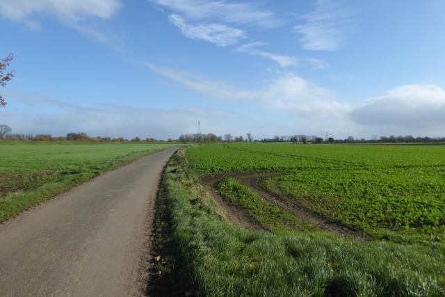 Farmland around Ings Lane