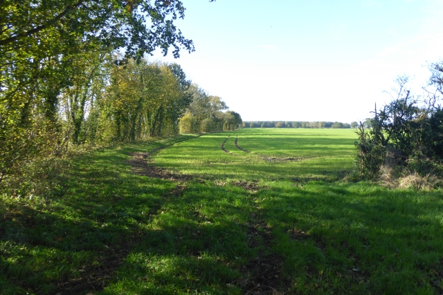 Farm track north of Kelfield