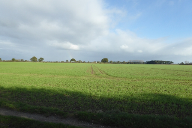 Fields east of the bridleway
