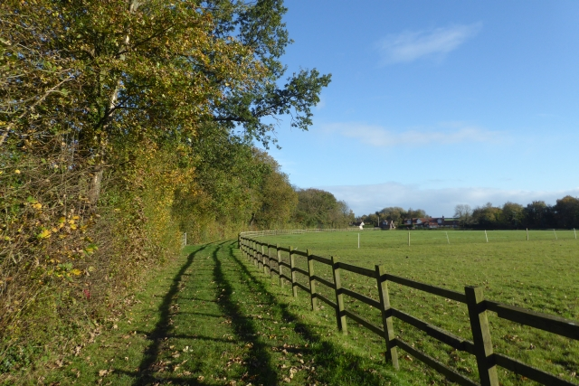 Bridleway through Coachroad Plantation
