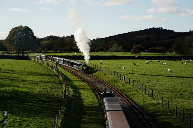 Autumn at Irton Road