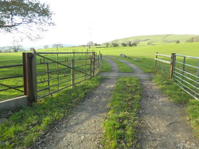 Gate and track to Castellau Uchaf Farm