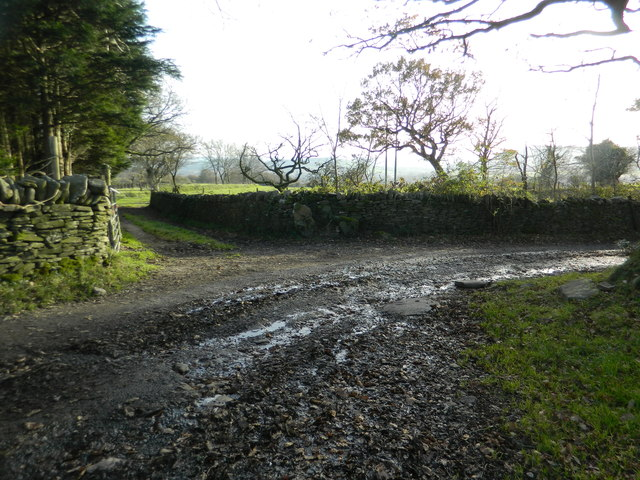 Farm track junction, near Castellau Uchaf Farm