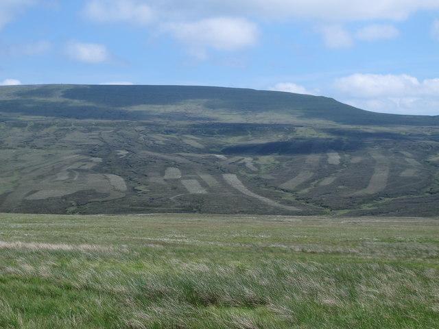 Moorland above Maize Beck (4)