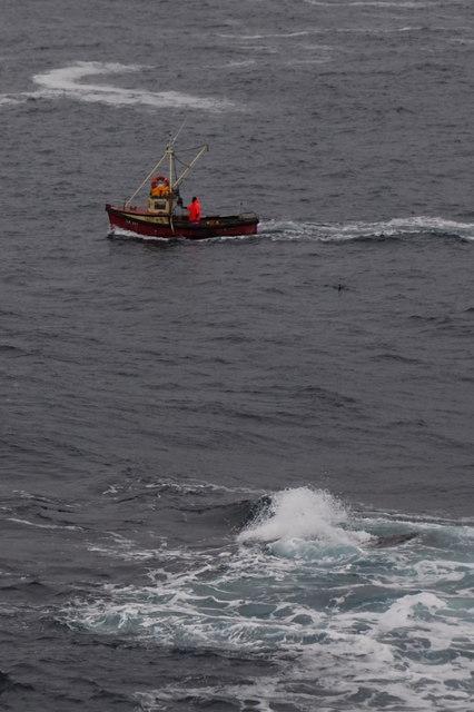 Creel boat passing Lamba Ness