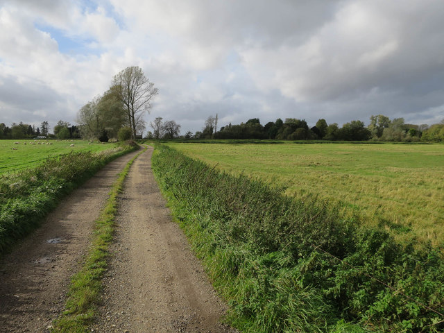 Footpath to A10