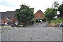SU8693 : Wren Vale by N Chadwick