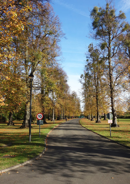 Driveway to Ditton Park Manor