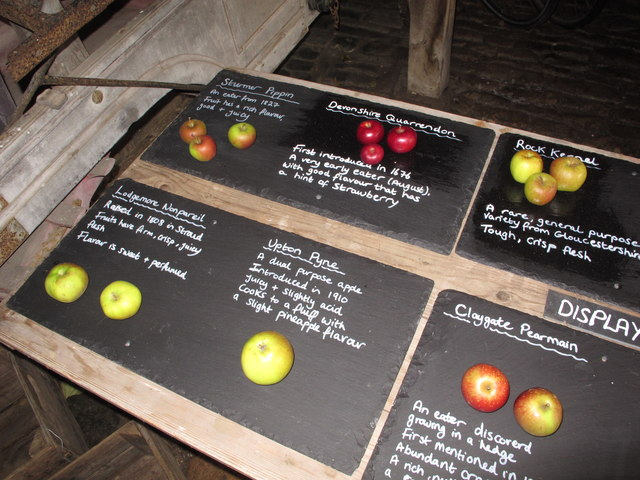 Apple display, Snowshill Manor