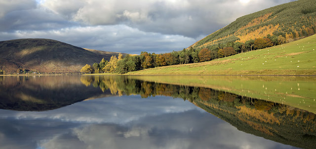 A tranquil St Mary's Loch