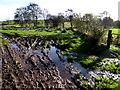 H4464 : Muddy ground, Blackfort by Kenneth  Allen