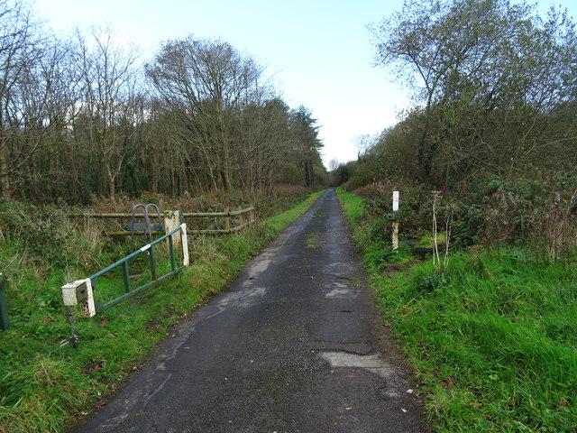 Entrance to Pembrey Forest