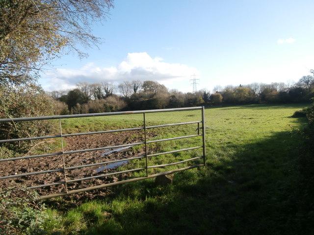 Pasture land, Groesfaen