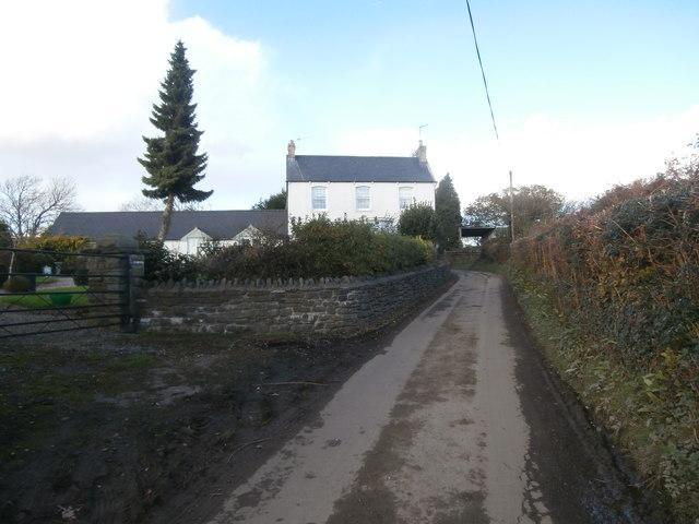 Llwynmilwas Farm