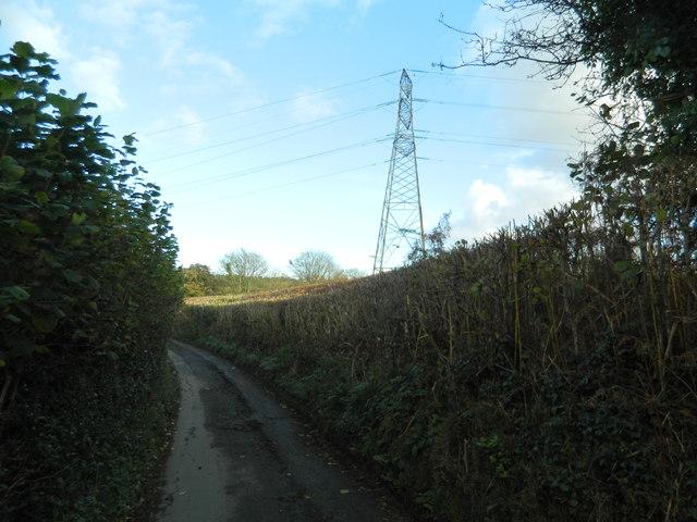 Pylon near Llwyn-y-brain Farm