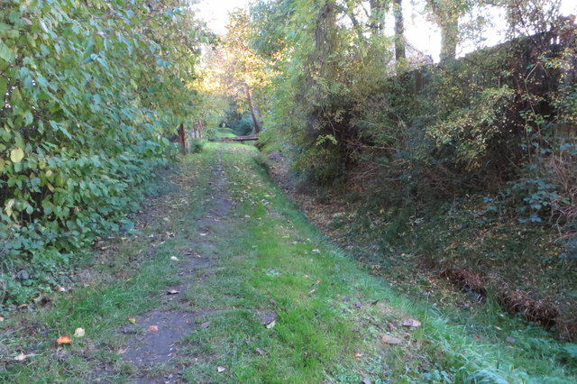 Footpath into the village by the stream