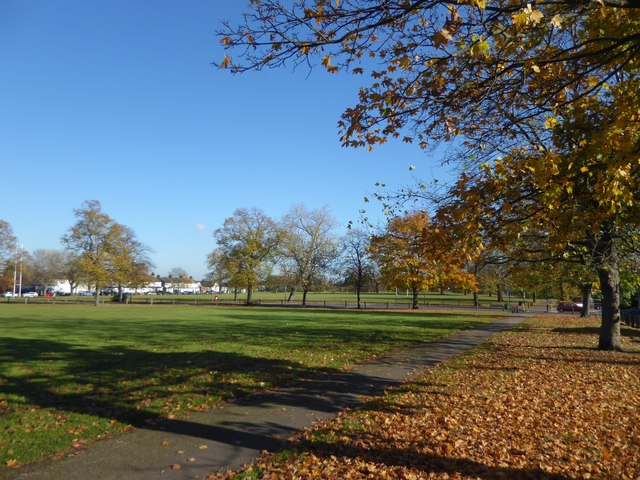 Autumn colours on Plumstead Common