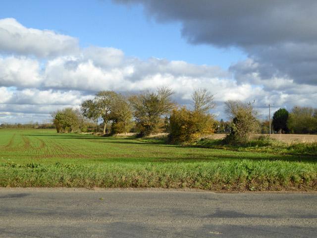 Farmland east of Sutton Road