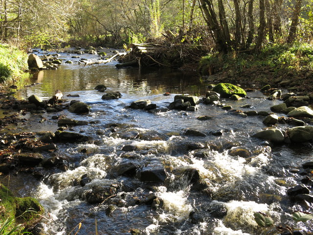 The River East Allen by Bridge Eal (2)