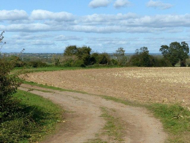 Field track near Fauld