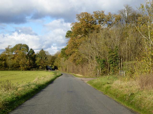 Abbotsley Road past Brickyard Plantation