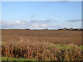 TL3567 : Brown field west of Swavesey by Robin Webster