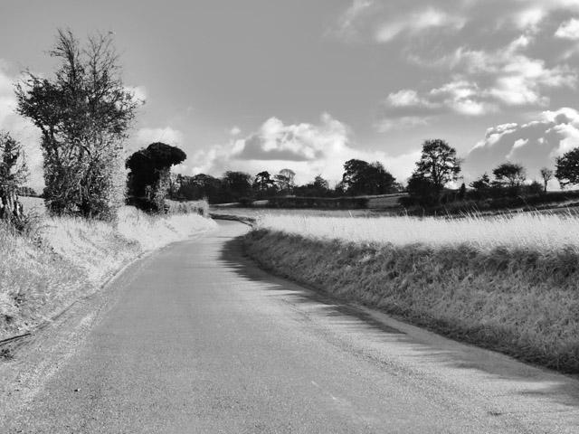 Wallington Road