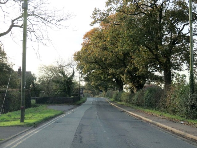 Newsham Hall Lane out of Broughton