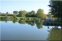 SP4408 : River Thames above Eynsham Lock by N Chadwick