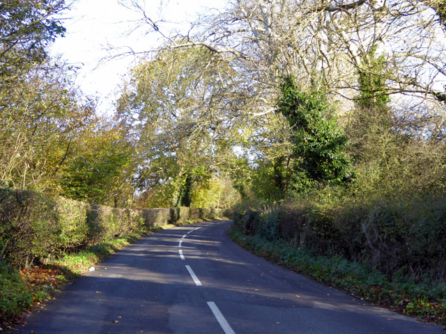 Road towards Letty Green