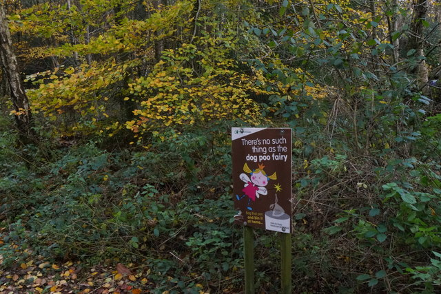 There's no such thing as the dog poo fairy, Alice Holt Forest
