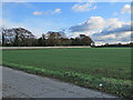 TL6568 : At High Park Corner by John Sutton