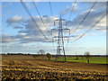 TL1481 : Power line running south-east by Robin Webster