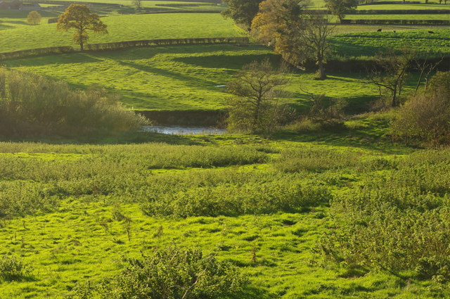 River Weaver, near Church Minshull