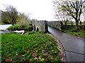 H4772 : Cranny footbridge, Cranny by Kenneth  Allen