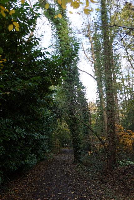 Path to Copsem Lane, Esher Common