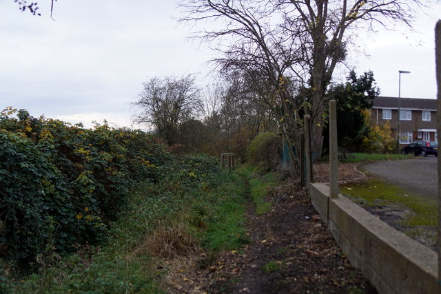 Footpath beside Dead River, Molesey