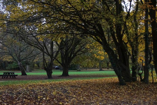 Car park and picnic area at Horton Park