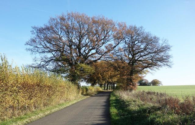 Jaques Lane, Burghfield
