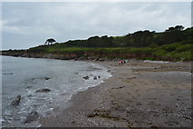 SX5148 : Wembury beach by N Chadwick