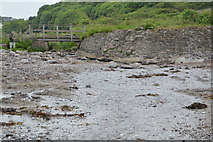 SX5148 : Stream on the beach, Wembury by N Chadwick